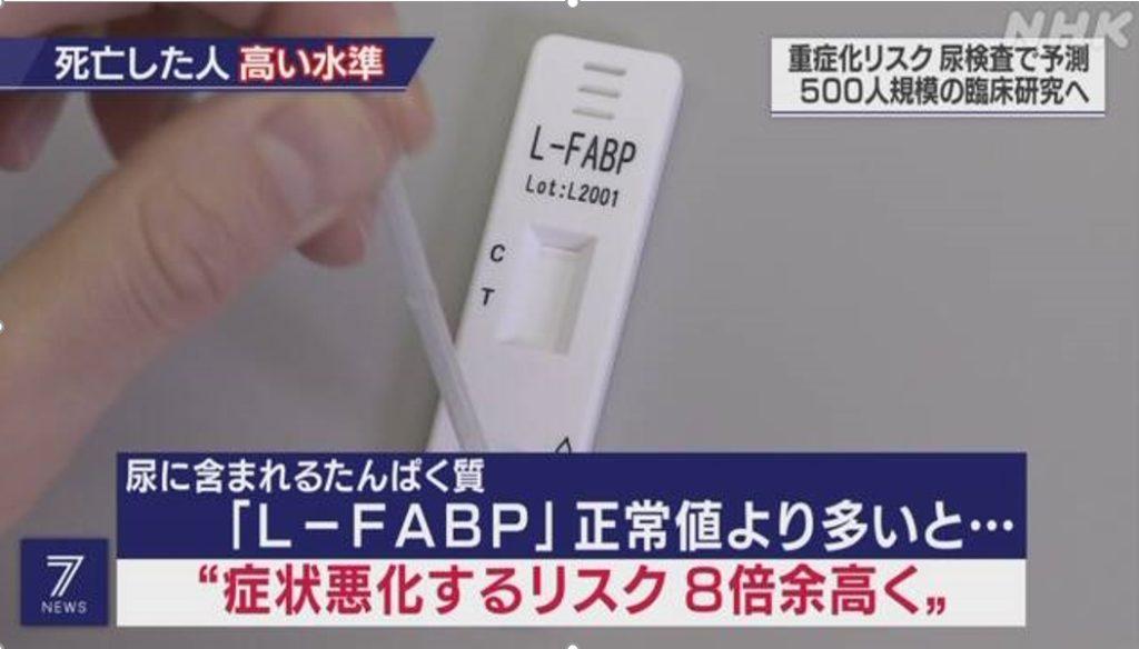 コロナ重症化リスク検査、L-FABP